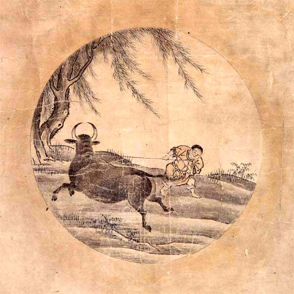 Das Fangen des Ochsen